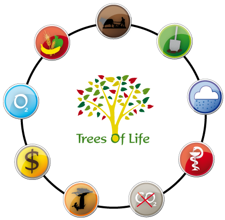 Trees Of Life information circle demonstration
